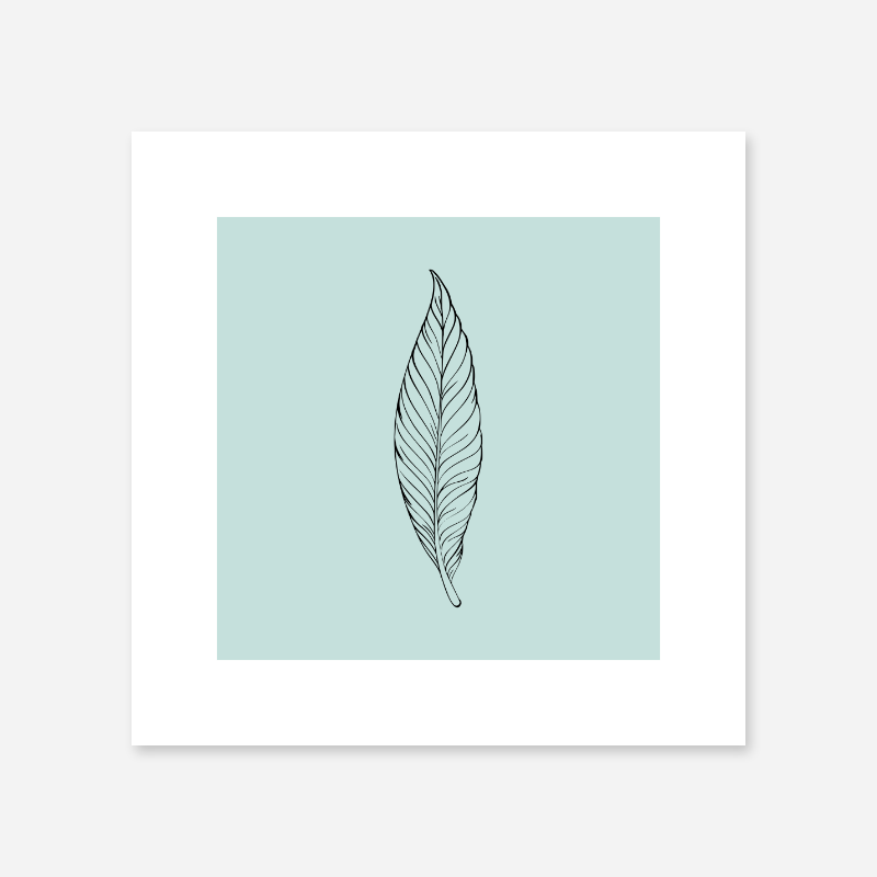 Black feather on light teal background free downloadable print at home design