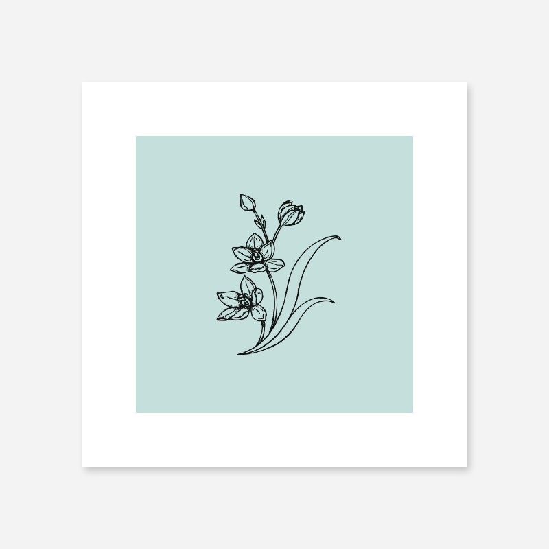 Black flower plant drawing with light teal greenish blue background design to print at home