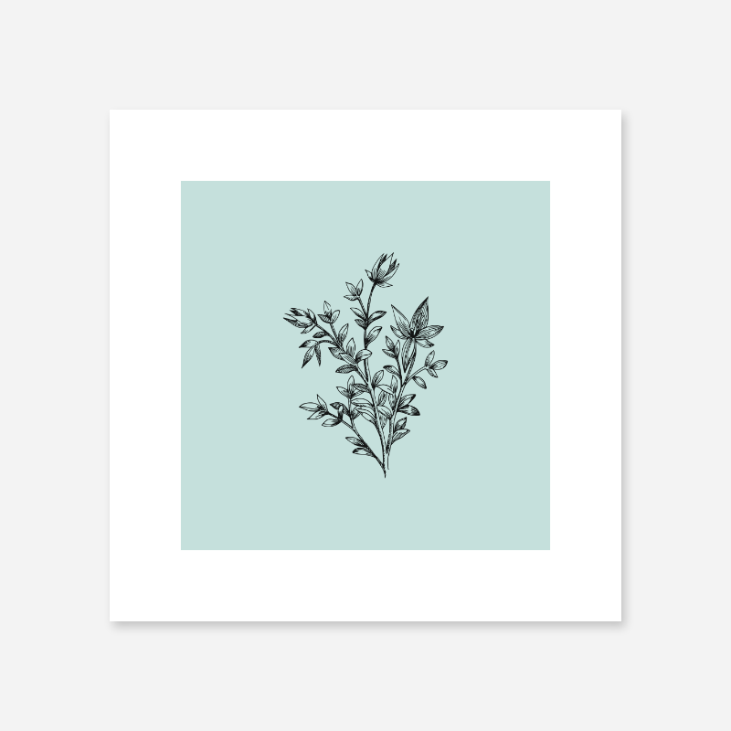 Black flower plant line drawing with light teal background design to print at home