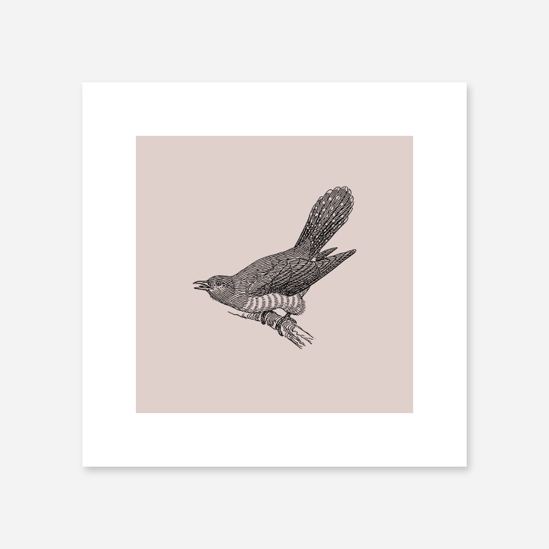 Bird on tree branch drawing with light greyish red background free printable design